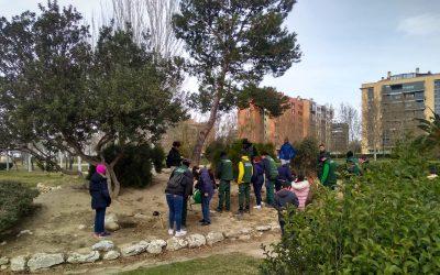 Recuperación de la Rocalla: plantaciones de aromáticas en este jardín estepario del Parque Oliver